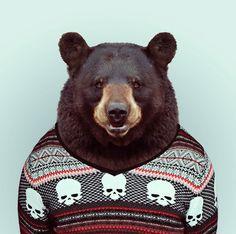 Hilarious Zoo Portraits by Yago Partal | Bored Panda