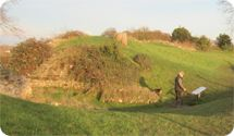 Silchester Roman Wall