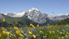 Dolomiti - Marmolada vista da Passo Sella