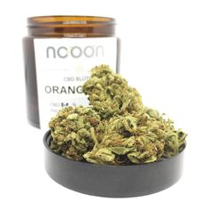 ORANGE BUD I CBD Blüte I Unter 0,3 THC I CBD Flower I Hemp | NOOON CBD Orange, Bud, Dog Food Recipes, Herbs, Flowers, Products, Hemp, Plants, Floral