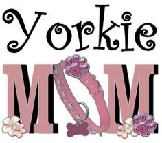 Yorkie mom - that is me!   And Proud to Be!                              …