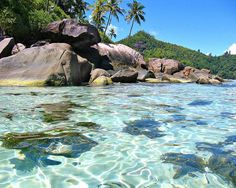 Exotic Dream Beach At Seychelles