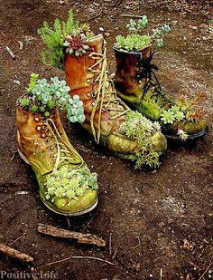 musgo en los zapatos ;-)