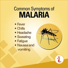 Symptoms of #Malaria can develop as quickly as 7 days after you are bitten by an infected #mosquito
