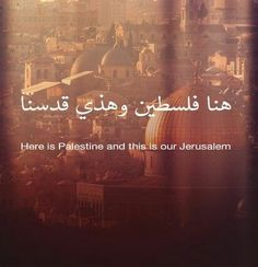 Here is Palestine Beautiful Arabic Words, Beautiful Places, Palestine Art, Arabic Poetry, National History, United We Stand, World Peace, Holy Land, Oppression