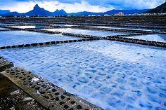 Mauritius Salt Bed - West