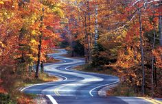 Curvy Road In Fall The Great Smoky Mountains Near