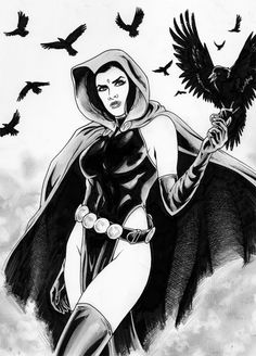 Raven Teen Titans Go, Teen Titans Fanart, Raven Beast Boy, Dc Cosplay, Batman Family, Geek Girls, American Comics, Dc Heroes, Nightwing