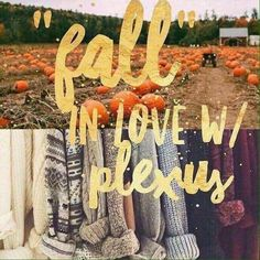 "It's that time of year again! Chilly nights, football games, campfires, pumpkins, hay bales, apple cider, hayrides, and all the fun that Autumn brings! Isn't it the perfect time to ""Fall"" in love with Plexus? Commit to 60-90 days and I know you will love how good you feel, and will be able to enjoy these Autumn blessings without the guilt, without the fatigue/sluggishness, without the stress! (Plus, the holidays are right around the corner!! )"