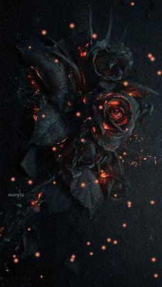Rose Wallpaper, Cute Wallpaper Backgrounds, Cute Wallpapers, Dark Fantasy Art, Dark Art, Skull Rose Tattoos, Burning Rose, Gothic Aesthetic, Phone Backgrounds