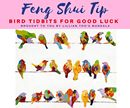 Feng Shui Tip!!! Bird Tidbits for Good Luck Paintings of birds bring much happiness and you'll notice that flower paintings almost always include some beautiful birds. It's believed that an image of a bird or bird feathers in your car will protect you from accidents and if you're trying to sell your home you can hang a picture or painting of birds near your front door or entryway to speed up the sale and bring in the buyers. And don't forget how well a pair of birds, especially mandarin…