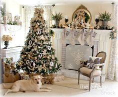 Christmas Living Room, with a most important member of the family! :) at The Fancy Shack blog.