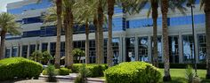 Valpak Front Entrance; palm trees and beautiful shrubs
