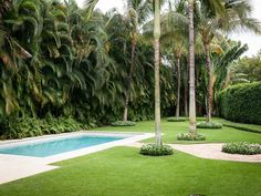 Palm Beach Perfection