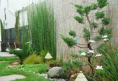 diseño jardin japones plantas pared