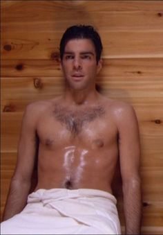 American actor and producer, Zachary Quinto, who acted in Star Trek Into Darkness...