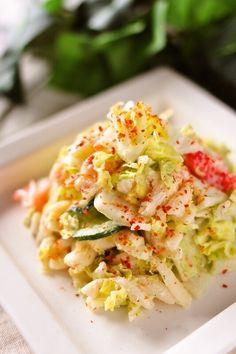 白菜のおかず10選お弁当に使えるレシピをピックアップ