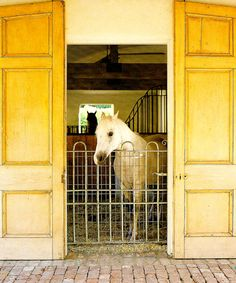 horse stall with french doors!  kelly harmon designer