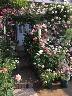 Stop & smell the roses Love Garden, Garden Art, Garden Landscape Design, Garden Landscaping, Casa Magna, Beautiful Gardens, Beautiful Flowers, English Country Gardens, Romantic Cottage