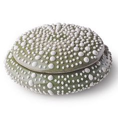 Jayson Home and Garden, Cermic Urchin Box