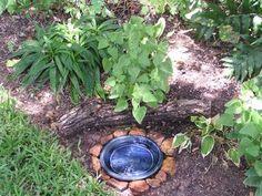 backyard habitat bird baths