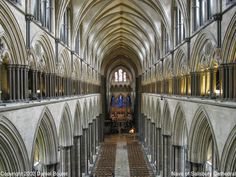This wonderful photograph by Daniel Boulet shows the vertical orginization of the cathedral.  The bottom level is called the arcade and is formed by the nave piers which separate the nave from the aisles running to either side of it.  The second level is called the triforium and usually consists of a row of triple arches (it is also called the gallery).