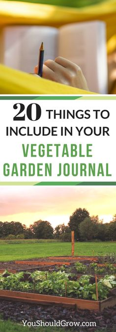 20 Things To Include In Your Vegetable Garden Journal -- Are you keeping a journal of your gardening adventures? If not, then you are missing out on valuable information. Keeping a garden journal will improve your gardening skills, provide you with historical information about your garden to better predict results, and help you keep an inventory of...