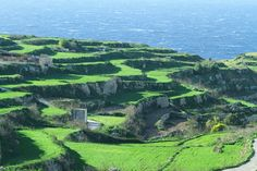 #Gozo is perfect if you fancy a walk in #nature. The terraced fields are one of the very typical characteristics of the island │ gzovillarentals.com