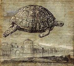 Melchior Lorch, Tortoise flying above the venetian lagoon, 1555