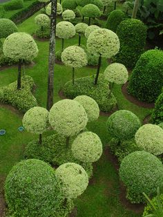 Thaïlande_NV7 107 | photigule | Flickr Topiary Garden, Topiary Trees, Garden Art, Garden Spheres, Garden Paths, The Secret Garden, Dream Garden, Shades Of Green, Garden Inspiration