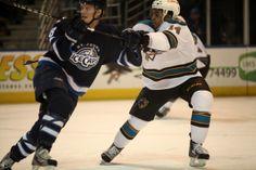 Worcester Sharks defenseman Sena Acolatse battles with St. John's IceCaps defenseman Brenden Kitchon (Dec. 27, 2013).