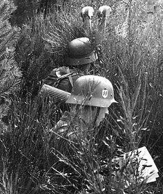 Waffen SS, pin by Paolo Marzioli German Soldiers Ww2, German Army, Luftwaffe, Military Art, Military History, Germany Ww2, German Uniforms, Ww2 Photos, War Dogs
