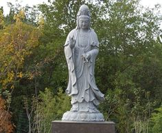 Guanyin with a dragon antique dealers who specialise in this item - chinese dance thousande hand guanyin video download in mobile esy to download: guanyin concrete face