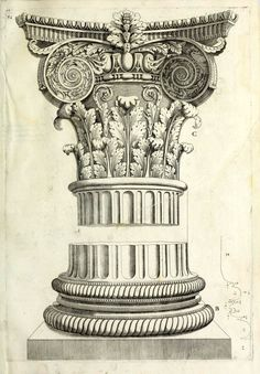 beautiful classical column architectural drawing