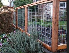 Enticing Front yard fence landscaping ideas,Wooden fence boards and Garden fence sections. Cheap Garden Fencing, Diy Fence, Fence Landscaping, Backyard Fences, Fence Gate, Fenced In Yard, Fenced In Backyard Ideas, Backyard Privacy, Farm Fence