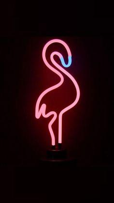 Pin by Lili St-jean on neon Flamingo Wallpaper, Neon Wallpaper, Tumblr Wallpaper, Black Wallpaper, Disney Wallpaper, Screen Wallpaper, Cute Backgrounds, Cute Wallpapers, Wallpaper Backgrounds