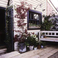 Sussex : campagne anglaise. La maison d'Anna Phillips et Jeff Kightly.