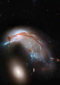 Interacting galaxy duo Arp 142 captured by NASA Hubble Space Telescope, released on June The pair contains the disturbed, star-forming spiral galaxy NGC along with its elliptical companion, NGC 2937 at lower left. Fotos Do Hubble, Hubble Photos, Hubble Pictures, Astronomy Pictures, Hubble Images, Telescope Pictures, Hubble Space Telescope, Space And Astronomy, Astronomy Science