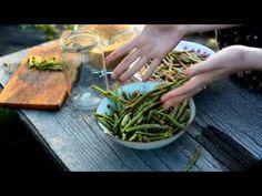 Syrop z pędów sosny. Jak przygotować syrop z pędów sosny tradycyjną metodą? (syrop majowy, syrop sosnowy) Green Beans, Herbs, Make It Yourself, Vegetables, Cooking, Diy, Magick, Syrup, Kitchen