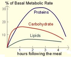 Healthy Living: EATING PROTEIN FOR FAT LOSS