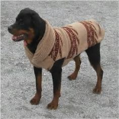 crochet large dog sweater crocheted doggie sweater - here is the attachment with three .jpeg photos showing the dog sweater. i made it to the 18 ERNGGSA - Crochet and Knit Large Dog Coats, Large Dog Sweaters, Large Dogs, Dog Sweater Pattern, Crochet Dog Sweater, Dog Pattern, Big Dogs, Cute Dogs, Le Plus Grand Chien