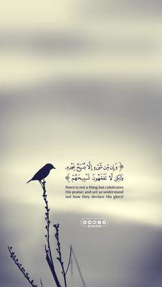 Dua'a and Quran Quran Quotes Love, Quran Quotes Inspirational, Allah Quotes, Muslim Quotes, Religious Quotes, Faith Quotes, Islamic Qoutes, Wisdom Quotes, Life Quotes