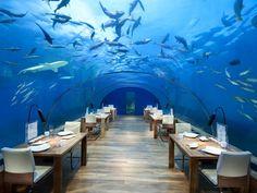 Conrad Maldives Rangali Island Hotel - Ithaa undersea restaurant