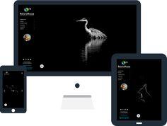 Site internet avec WordPress pour Emmanuel Tardy à Bailleau-l'Évêque sur le site…
