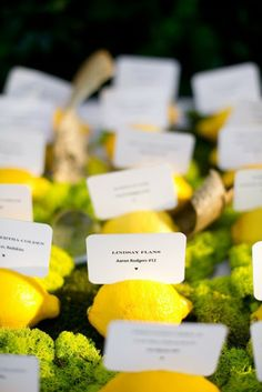 Escort cards and seating charts are an indispensable part of any wedding but what's special about summer ones? They are fresh and some of them are tasty! I prefer edible escort cards like cards with lemons, apples . Summer Wedding, Wedding Day, Fruit Wedding, Wedding Menu, Diy Wedding, Wedding Decor, Football Wedding, Glass Photography, Apples Photography
