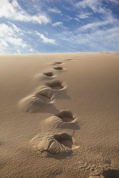 Le bassin d'arcachon, paysage, photographie, la dune du Pilat