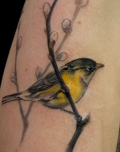 pinner writes: One of the most adorable yellow bird tattoos I have ever seen. Done by Esther at Butterfat Tattoo in Chicago.