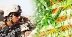 Medical Marijuana for PTSD? Here Are the 23 States Where You Can Get It - AlterNet