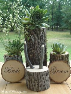 Rustic 4 Weddings: Rustic Hen And Chicks Wedding Tree Branch Pens With Log Holder
