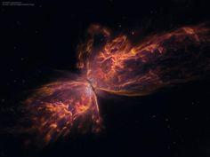 Muitos objetos brilhantes do céu noturno são nomeados em homenagem a flores ou insetos, por conta de seus formatos que lembram as criaturas terrestres. A Nebulosa Borboleta não é nenhuma exceção.